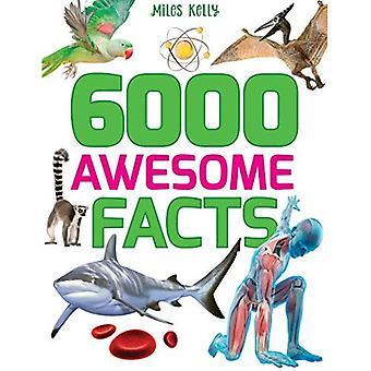 6000 awesome feiten