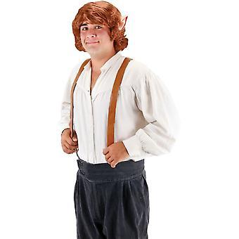 Aikuisten peruukki Bilbo Reppuli