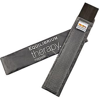 Equilibrium 2 Large Spare Magnet