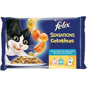 Felix  Multipack Sensations Fish Selection Gelatines (Cats , Cat Food , Wet Food)