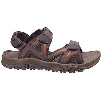 Cotswold miesten Cutsdean sandaalit