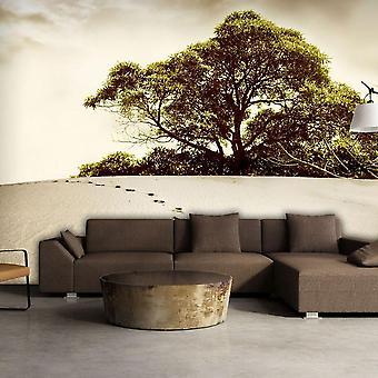 Tapete - Baum in der Wüste