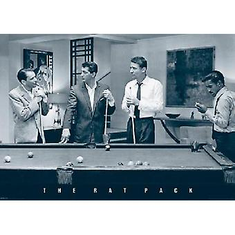 Rat Pack Pool Poster Poster Print