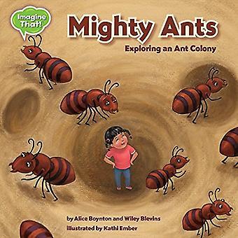 Mighty Ants - Exploring an Ant Colony by Alice Boynton - 9781634402767