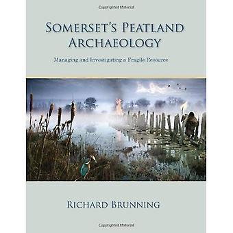 Somerset's Peatland Archaeology