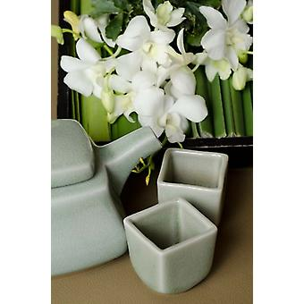 Traditional Thai tea pot and cups with orchid arrangement Bangkok Thailand Poster Print by Cindy Miller Hopkins