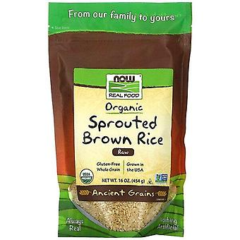 Now Foods, Real Food, Organic Sprouted Brown Rice, Raw, 16 oz (454 g)