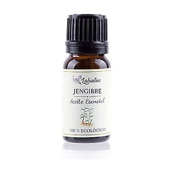 Organic Ginger Essential Oil 12 ml of essential oil