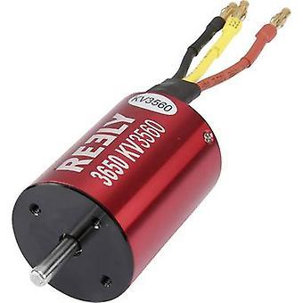 Reely Model car brushless motor kV (RPM per volt): 3650