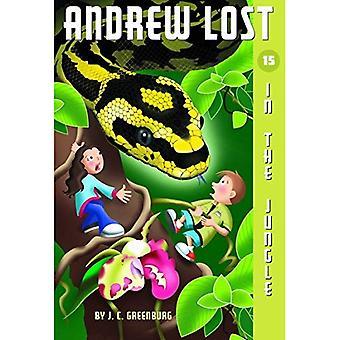 Im Dschungel (Andrew verloren)