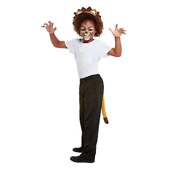Childrens Lion Face Paints Headband & Tail