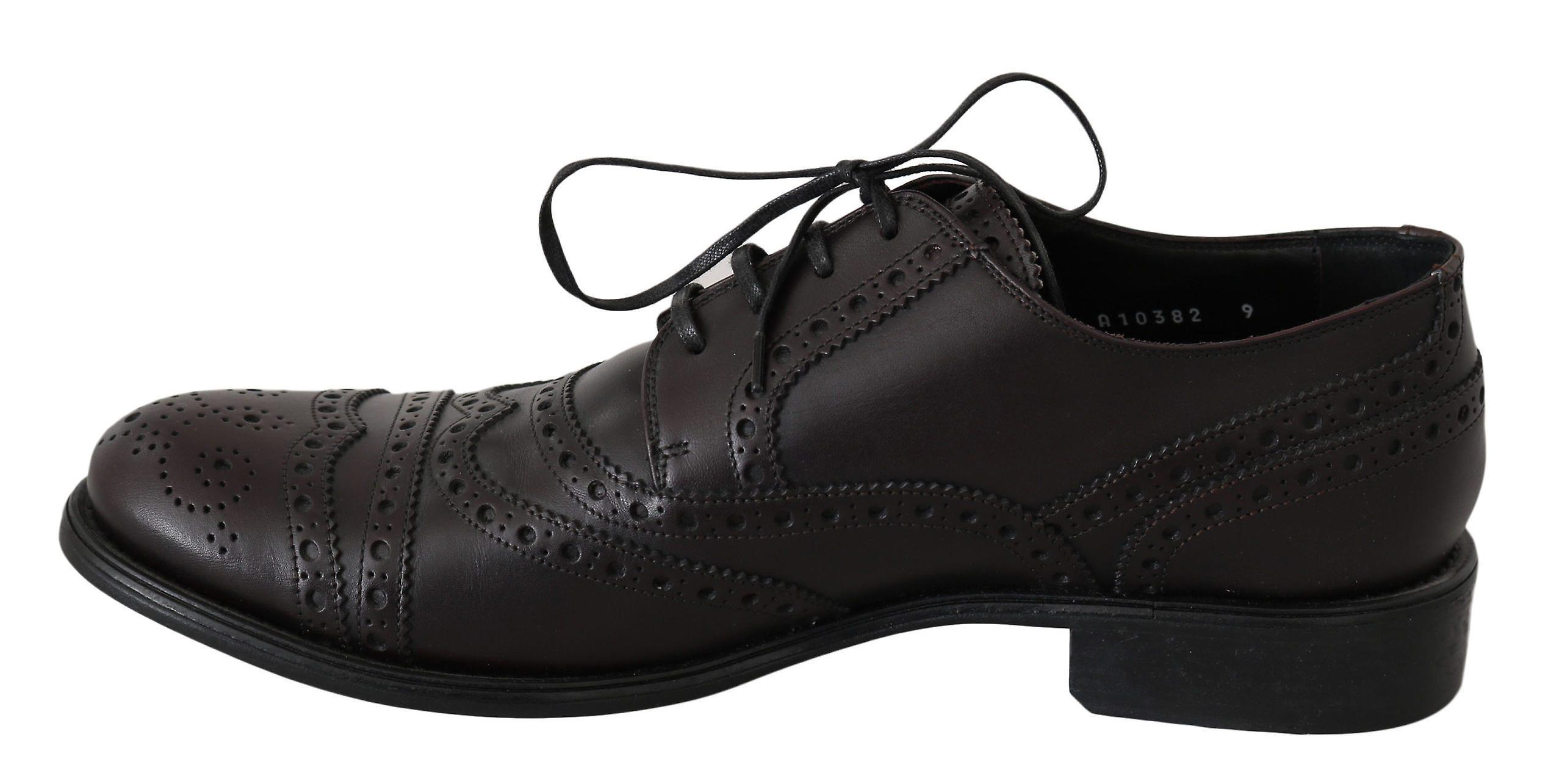 Dolce & Gabbana Bordeaux Leather Wingtip Oxford Brogue Shoes Mv2405-43