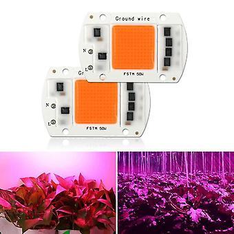 Led-kasvi kasvaa kevyttä täi-lastun taimea ja kukkien kasvua