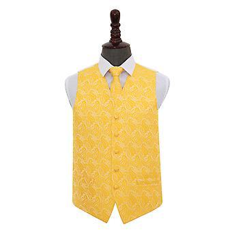 Gull Paisley bryllup vest & Tie sett
