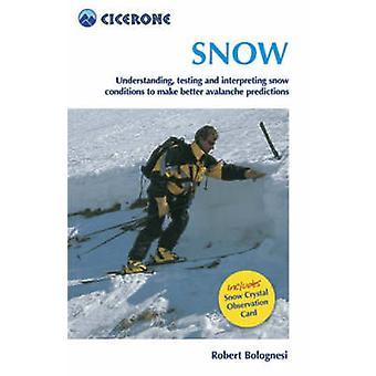 Sneeuwwitje - begrijpen - het testen en het interpreteren van de sneeuwcondities te Mak