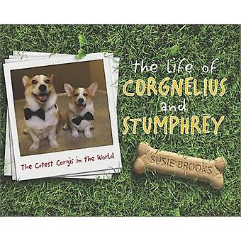 The Life of Corgnelius and Stumphrey - The Cutest Corgis in the World