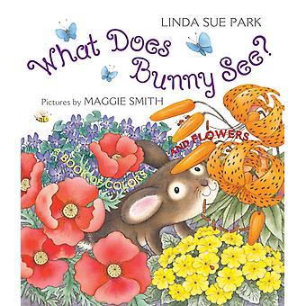 ماذا يرى الأرنب من قبل ليندا سو بارك وبارك