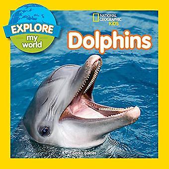 Tutkia maailmaa delfiinit