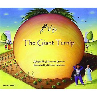 Le navet géant ourdou & anglais (contes)