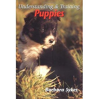 Verständnis und Ausbildung Welpen