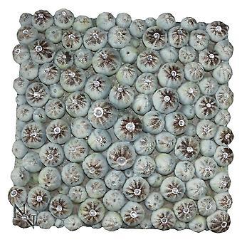 Nemesis Now Urchin Fossils 21.5cm