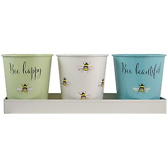 English Tableware Co. Bee Happy Three Storage Pots with Tray