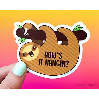 Cute Sloth Vinyl Sticker - How's It Hangin