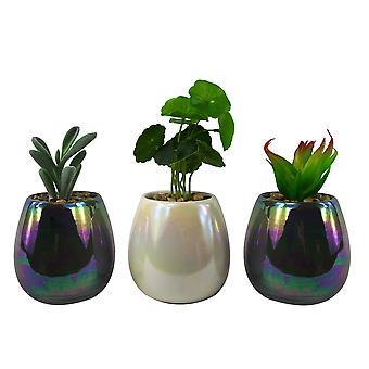 15cm conjunto de tres miniplantas de cerámica de mezcla blanca gris con plantas suculentas artificiales