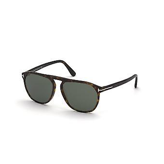 Tom Ford Jasper-02 TF835 52N Dark Havana/Lunettes de soleil vertes
