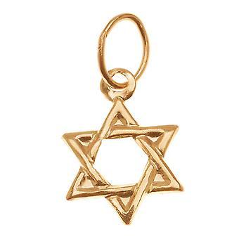 14K Guldfyldt charme, Davids jødiske stjerne med hoppering 11 mm, 1 stk.