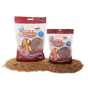 1.5kg chubby dried mealworms