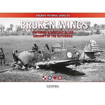 Broken Wings Captured  Wrecked Aircraft of the Blitzkrieg