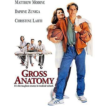 Bruttoanatomi (1989) [DVD] USA import