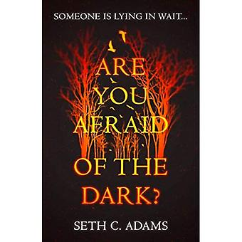 Vous êtes Afraid of the Dark ?