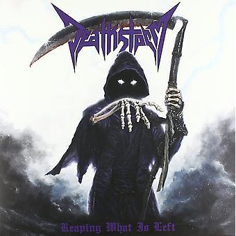 Deathstorm - Reaping What Is Left Vinyl