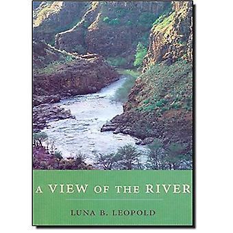 Utsikt över floden