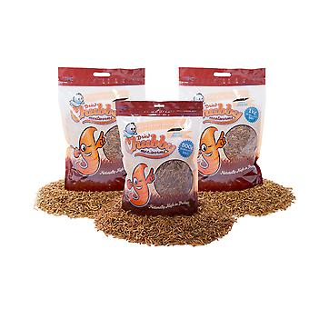 2.5kg chubby dried mealworms