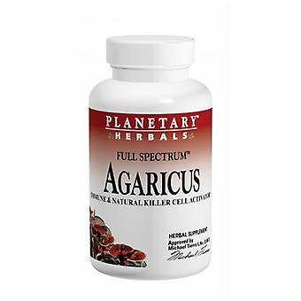Planetary Herbals Agaricus Extract Full Spectrum 500 mg, 90 cap