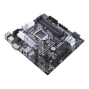 Asus Prime Z490M Plus Motherboard
