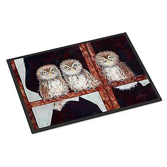 Door mats carolines treasures fhc1002mat owls by ferris hotard indoor or outdoor mat 18x2