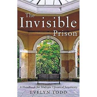 De onzichtbare gevangenis: A Handbook for Meervoudige chemische gevoeligheid