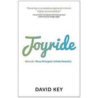 Joyride One Life. Three Principles. Infinite Potential. by Key & David