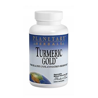 Planetary Herbals Turmeric Gold, 500 mg, 60 caps