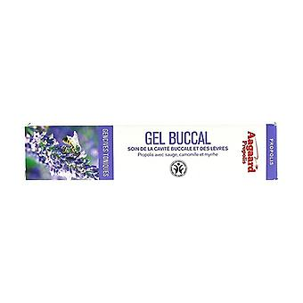 Buccal gel 20 ml of gel