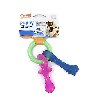 Nylabone Puppy  Chew Teething Pacifier - X-Small