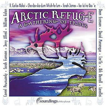 Arctic Refuge-Gathering - Arctic Refuge-Gathering of the [CD] USA import
