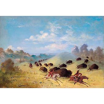 Comanche Indianen jagen Buffalo met, George Catlin, 60x40cm
