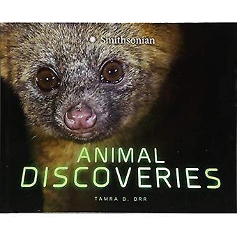 Dierlijke ontdekkingen (prachtige ontdekkingen)