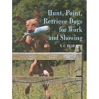 Perros de caza de punto de recuperación para el trabajo y mostrar