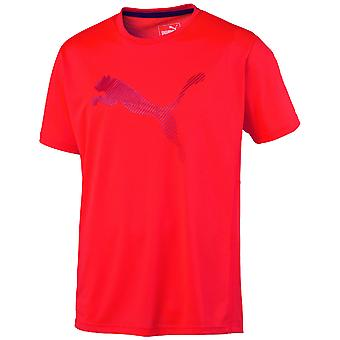 Puma Sport Mens Vent Cat Tee SS T Shirt DryCELL Tech